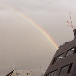 虹が出ました。
