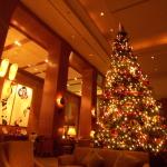 クリスマスツリーの季節ですね