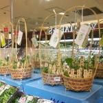 「春の七草」の商品