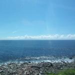 伊豆半島に行ってきました。
