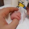 第一子が産まれました。