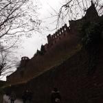 [ドイツ編] ハイデルベルク城に行ってきた。(1)