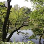 新江戸川公園に行ってきた。