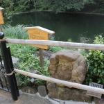 椿山荘の七福神を探せ