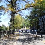 [ニューヨーク篇] ブルックリン・ブリッジ・パークに行ってきた。