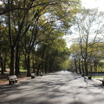 [ニューヨーク篇] リバーサイド・パークを歩いてみた。
