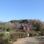 [鎌倉篇] 源氏山公園に行ってきた。