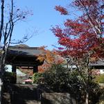 [鎌倉篇] 海蔵寺に行ってきた。