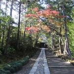 [鎌倉篇] 鎌倉のいろいろな寺社に行ってきた。