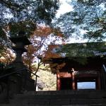 [鎌倉篇] 妙本寺に行ってきた。