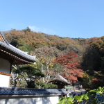 [鎌倉篇] 円覚寺に行ってきた、(2)