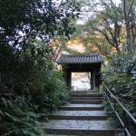 [鎌倉篇] 瑞泉寺に行ってきた。