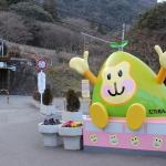 [大分篇] 高崎山自然動物園に行ってきた。