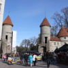 [エストニア篇] タリン旧市街を歩いてみた。(1)
