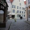 [エストニア篇] タリン旧市街を歩いてみた。(3)