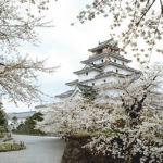 2013年のNHK大河ドラマは『八重の桜』