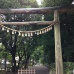 [九州篇] 高千穂神社・天岩戸神社に行ってきた。