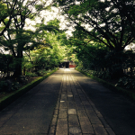 [山口篇] 龍福寺に行ってきた。