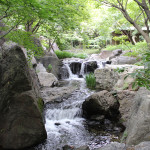 [名古屋篇] 白鳥庭園に行ってきた。
