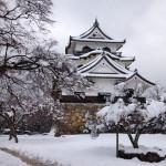 [滋賀篇] 彦根城に行ってきた。(1)