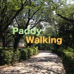 第1回「Paddyウォーキング」参加者募集