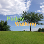 8月2日、第2回「Paddyウォーキング」を開催します。