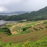 [北部九州篇] 浜野浦・大浦の棚田に行ってきた。