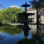[ポルトガル篇] リスボンに行ってきた。(1)リスボン大学付属植物園