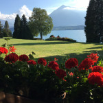 [スイス篇] オーバーホーフェン(3)庭園