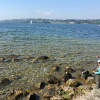 [スイス篇] ラッパースヴィール(4) チューリッヒ湖